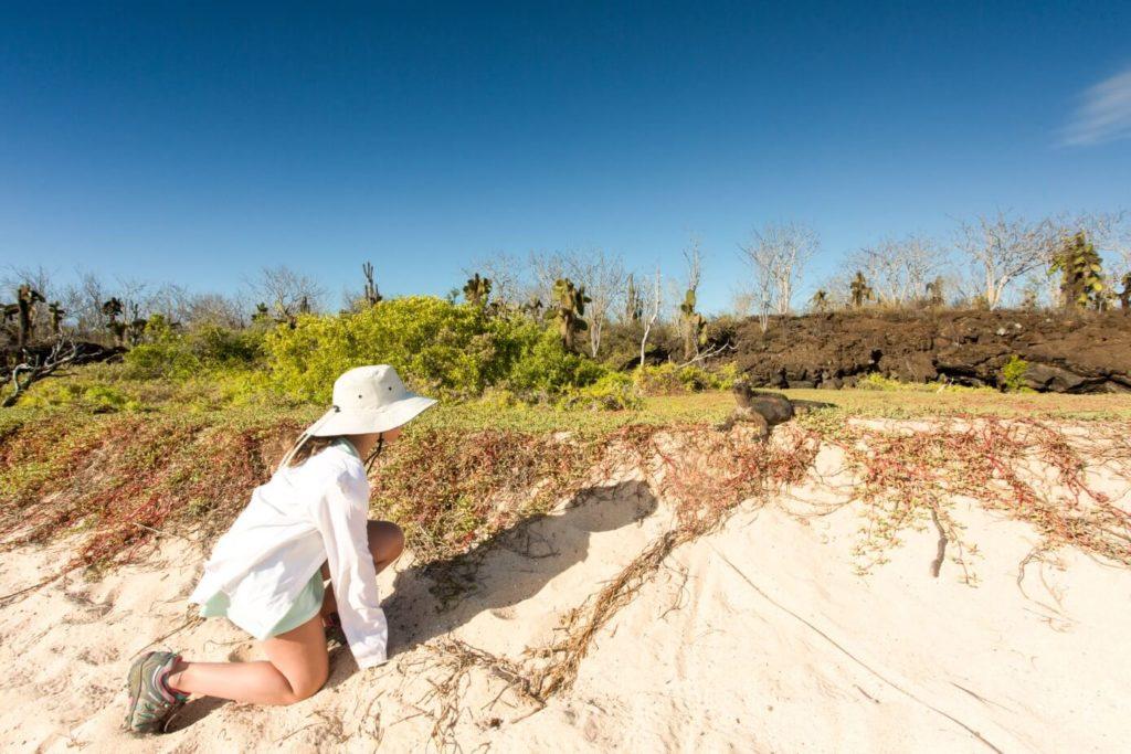 Galapagos animal encounters