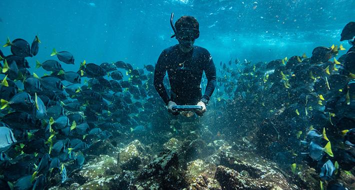 Snorkeling in Galapagos