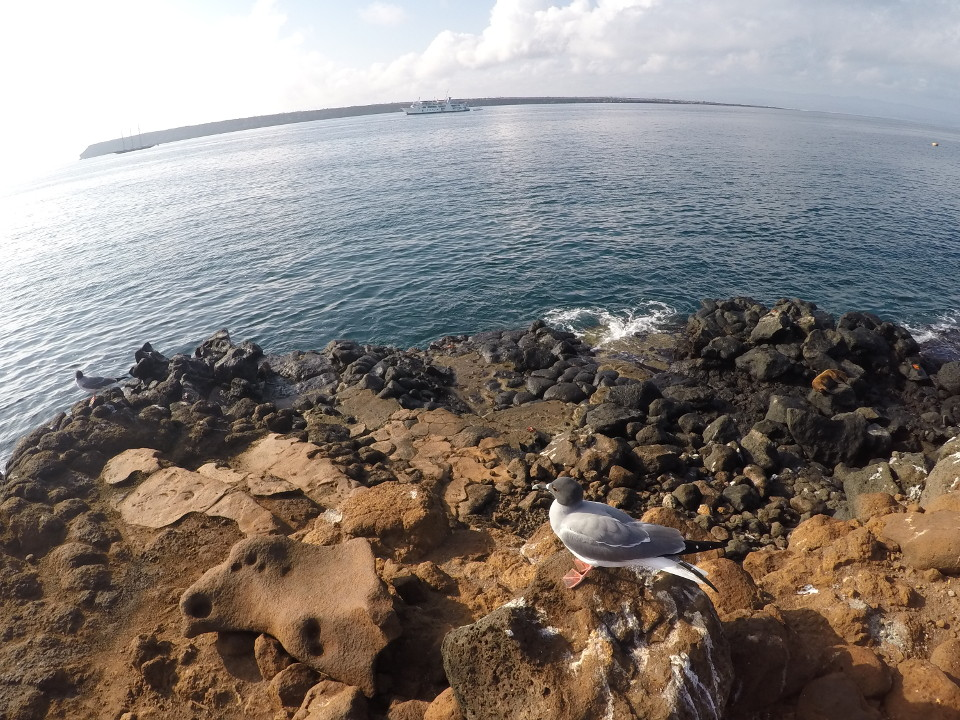 Galapagos Islands conservation zone