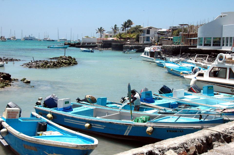 Puerto Ayora, Santa Cruz