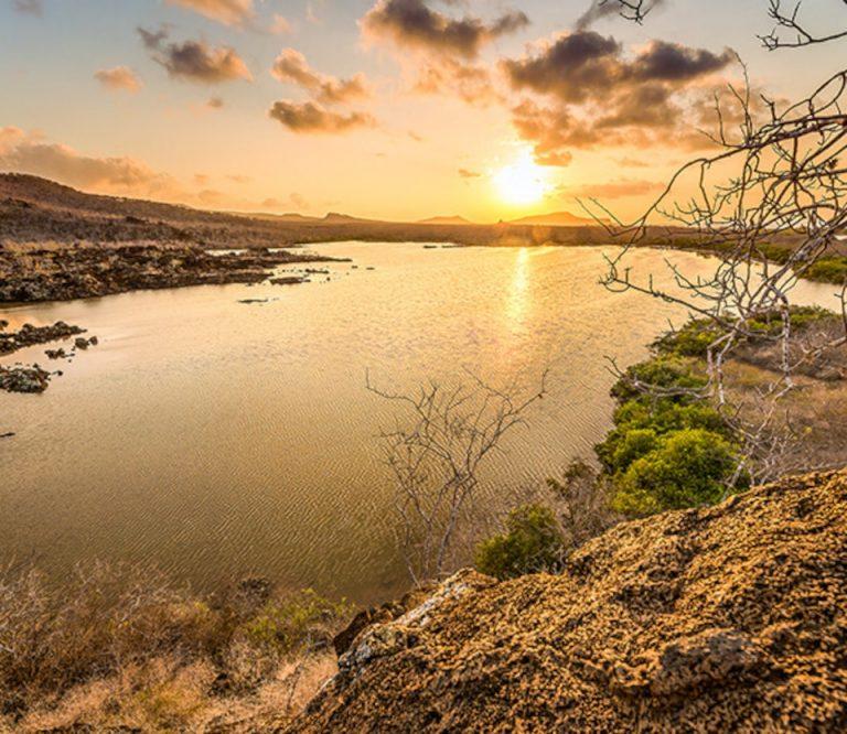 Floreana island, Galapagos islands