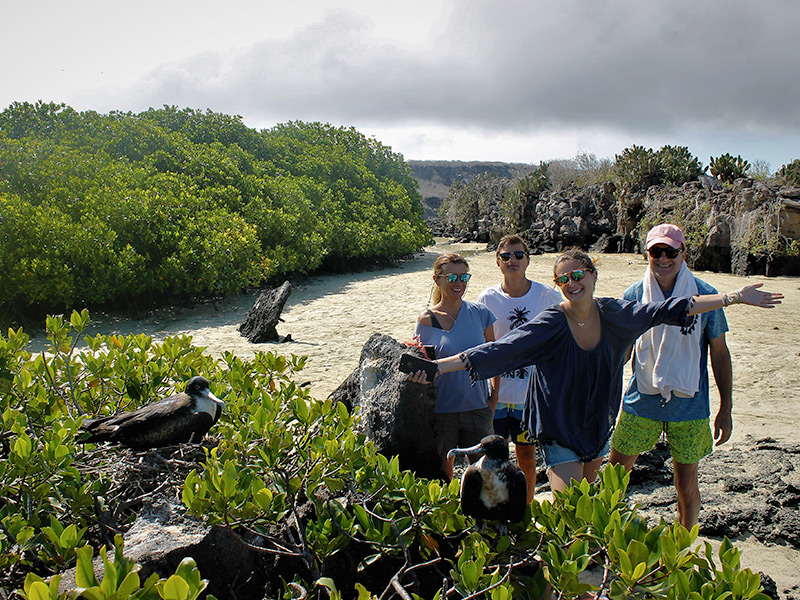Guests spot frigatebirds in the Galapagos