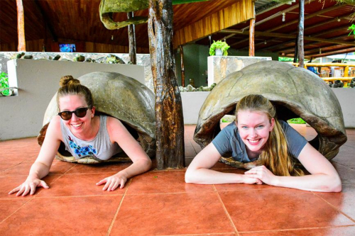Guests enjoying the giant tortoise reserve.