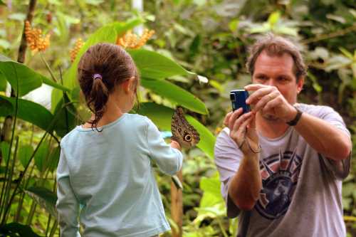 Mashpi's butterfly breeding center