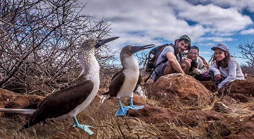 Family with blue-footed boobies