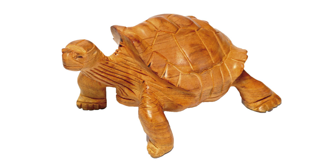 Wooden Galapagos giant tortoise
