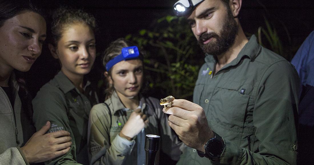 Mashpi Lodge night exploration