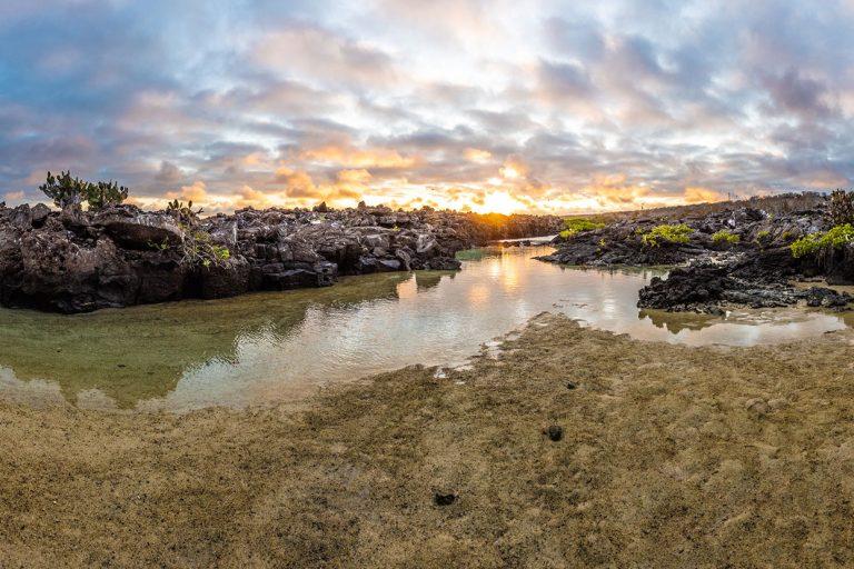 Darwin Bay