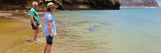 Couple at San Cristobal Island, Galapagos
