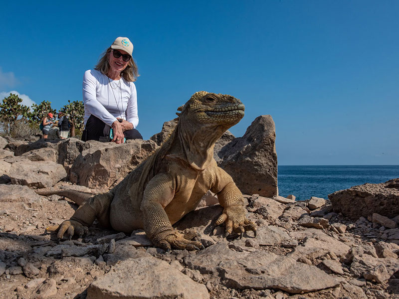 Guest with a Santa Fe Iguana